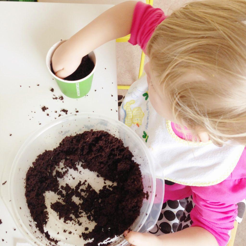 Kräutersamen einpflanzen DIY